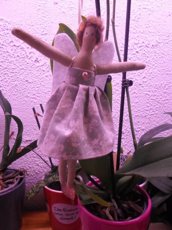 http://nathy.cowblog.fr/images/SAM0190.jpg